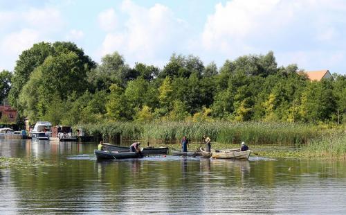 Traditioneller Fischzug